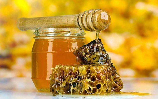 Miel de montaña en panales y tarro de cristal.