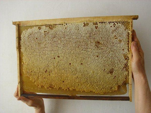 Marco con miel estampada.