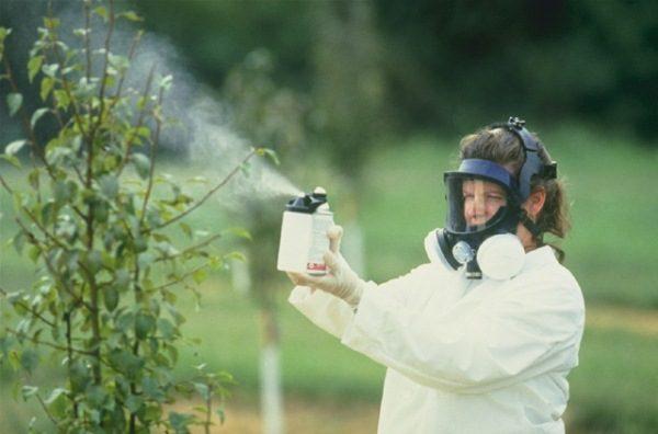 Tratamiento químico de plantas