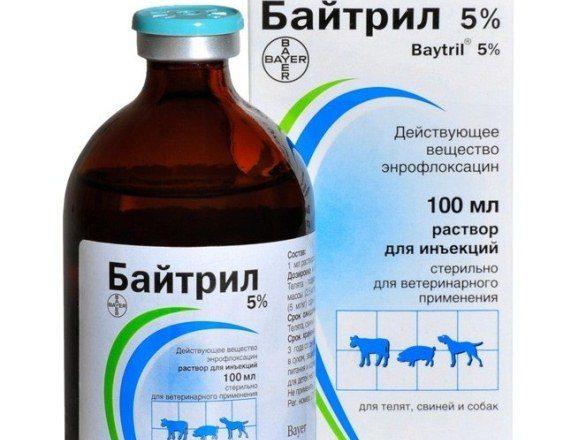 Solución Baytril al 5%