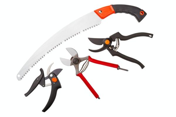 La podadora, la sierra para metales, el cuchillo de jardín y la cortadora deben afilarse y desinfectarse.