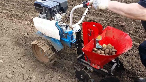 Sembrador de patatas